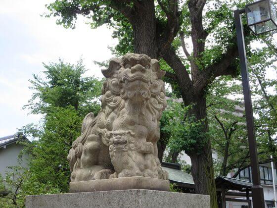 亀戸 香取神社 狛犬 左