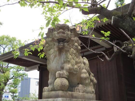 亀戸 香取神社 狛犬 右