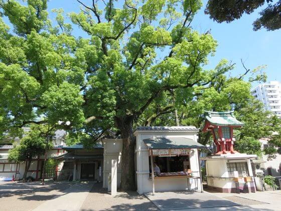 富岡八幡宮 ご利益