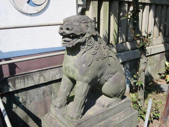 富岡八幡宮 狛犬 右