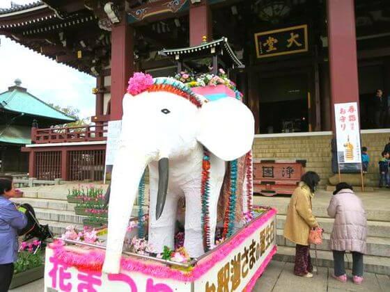 池上本門寺 白象車