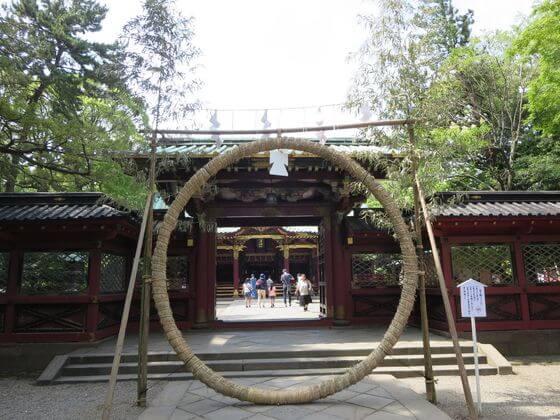 根津神社 茅の輪くぐり