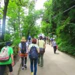 高尾山の一号路を登山した時間・距離は?