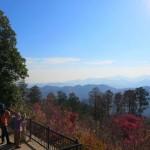 高尾山を登山した全記録<初心者にもおすすめコースをわかりやすく紹介>