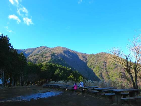 大山 見晴台 景色