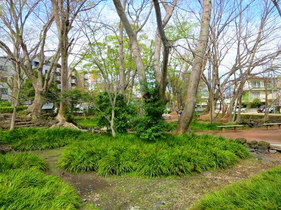 三島 白滝公園