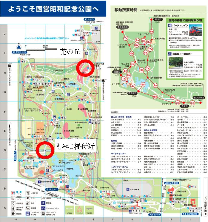 昭和記念公園 ひまわり 場所