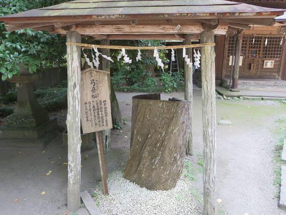 御霊神社 弓立の松
