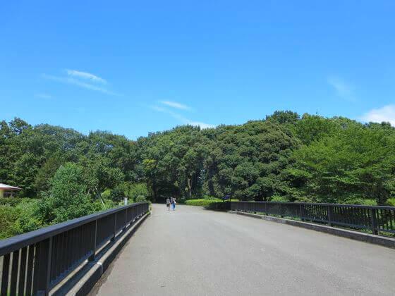 国営昭和記念公園 さつき橋