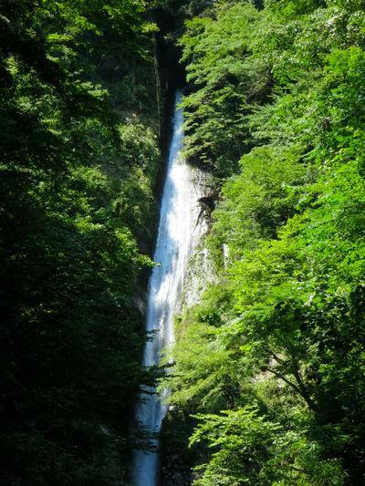 洒水の滝 山北