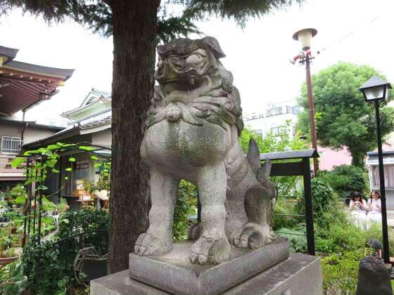 今戸神社 狛犬 右