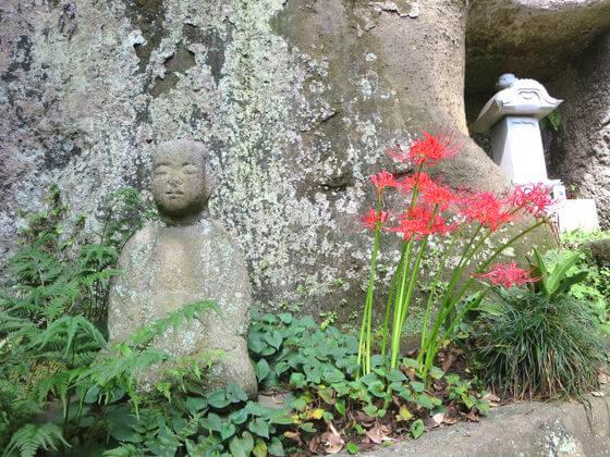 浄光明寺 鎌倉 ヒガンバナ