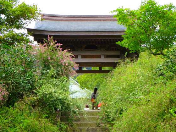 鎌倉 海蔵寺 萩