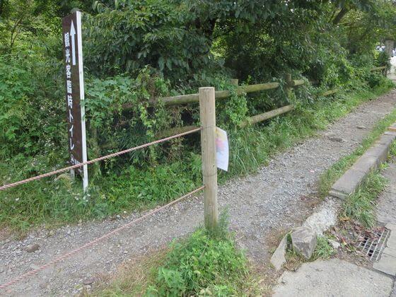 仙石原ススキ 入口