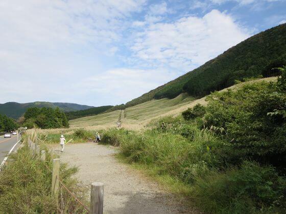 金時山 仙石原 すすき 徒歩