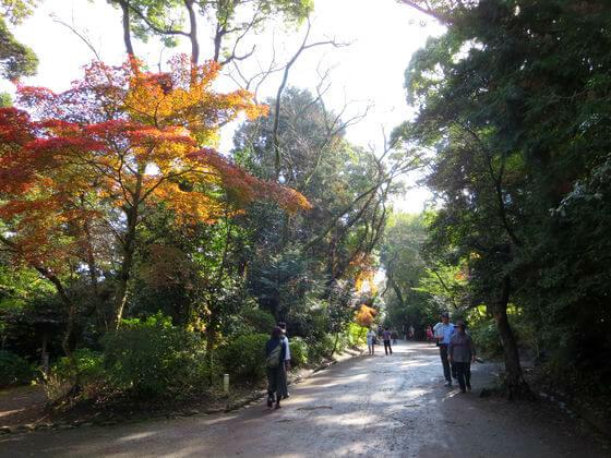 日野俊基の墓 紅葉