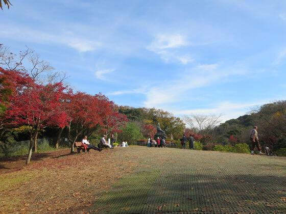 紅葉 鎌倉 源氏山公園