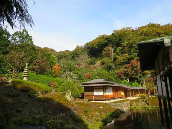 海蔵寺 本堂裏 庭園 紅葉