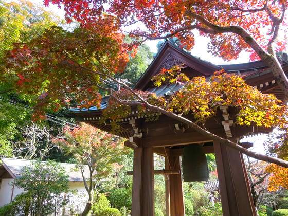 海蔵寺 鐘楼 紅葉