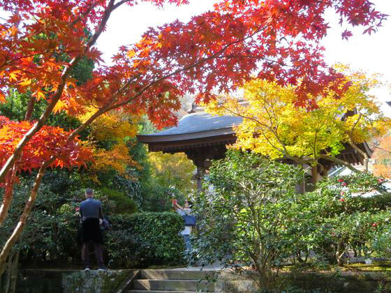 鎌倉 海蔵寺 山門 紅葉