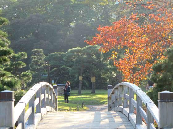 浜離宮恩賜庭園 中の橋 紅葉