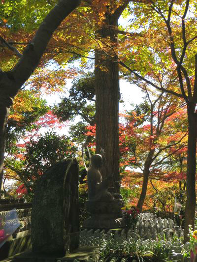 長谷寺 鎌倉 地蔵堂 紅葉