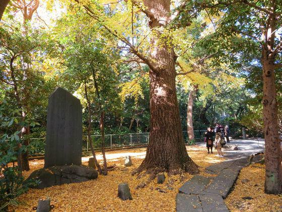 金子薫園歌碑