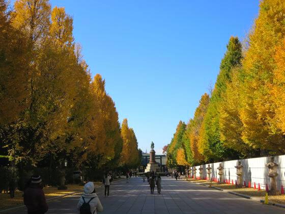 靖国神社 イチョウ並木