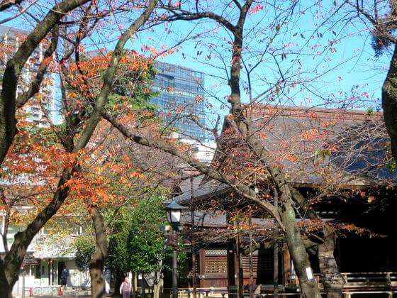 靖国神社 紅葉