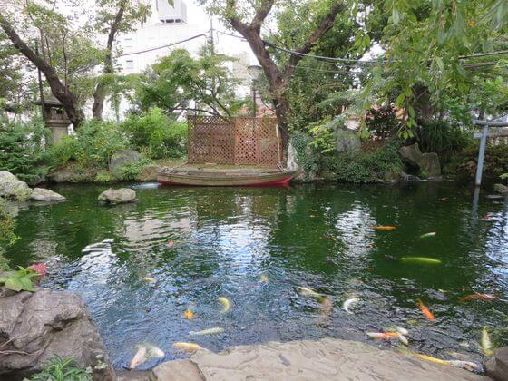 愛宕神社 池