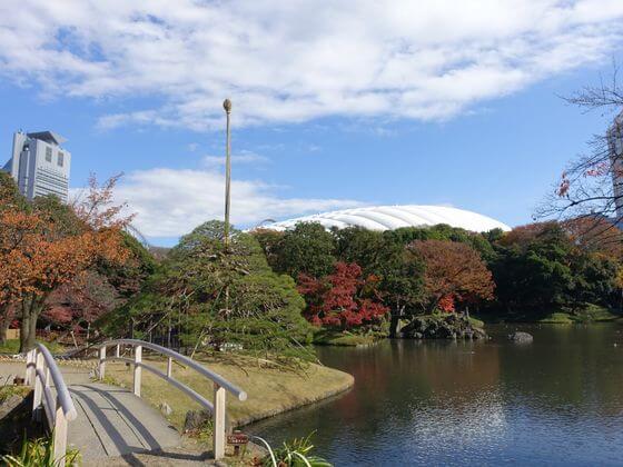 小石川公園 大泉水 紅葉