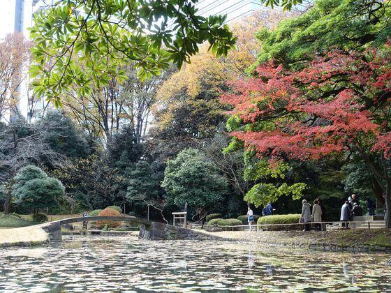 小石川公園 内庭 紅葉