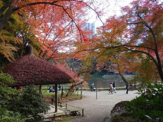 小石川公園 丸屋