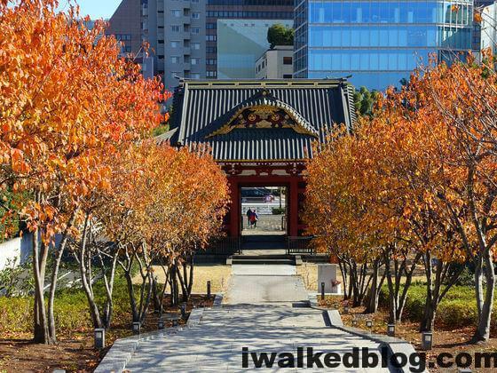 旧台徳院霊廟惣門 紅葉