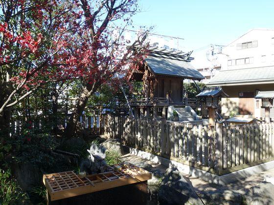 新宿 厳島神社 池