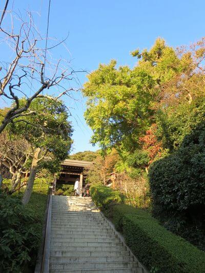 荏柄天神社 階段