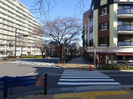 播磨坂桜並木交差点