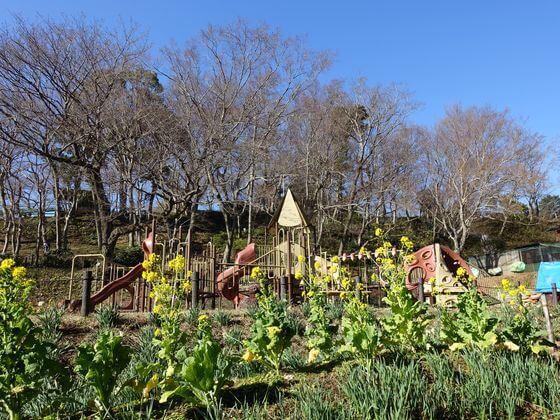 吾妻山公園 ジャンボエイト
