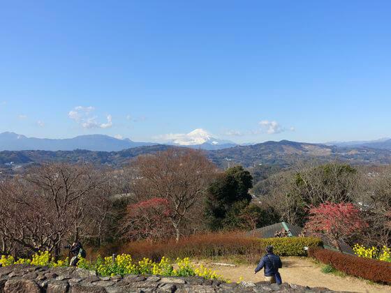 吾妻山公園 展望台 富士山