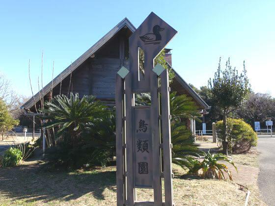 葛西臨海公園 鳥類縁