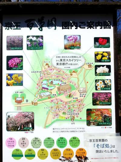 百草園 地図