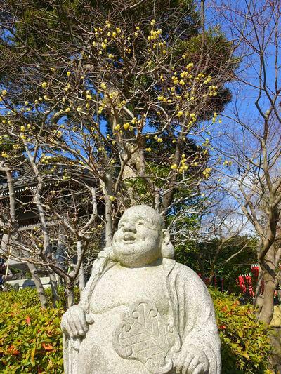 長谷寺 布袋像
