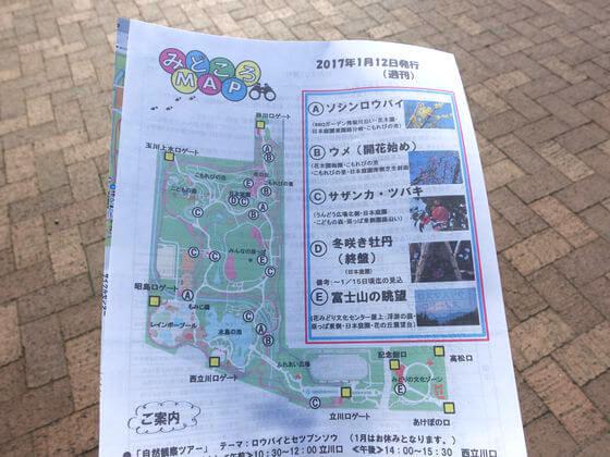 昭和記念公園 ロウバイ 場所