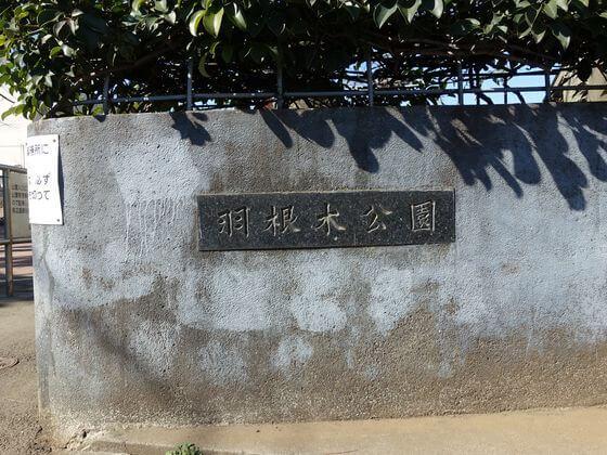 世田谷 羽根木公園