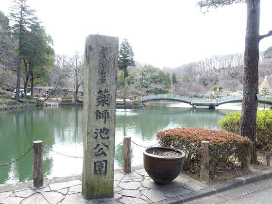 薬師池公園 アクセス