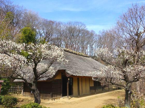 薬師池公園 旧永井家