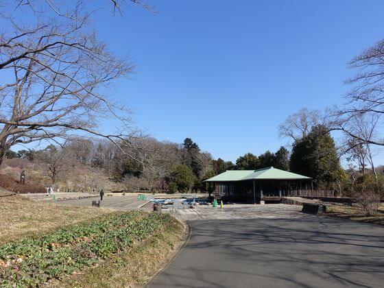 森林公園 雅の広場