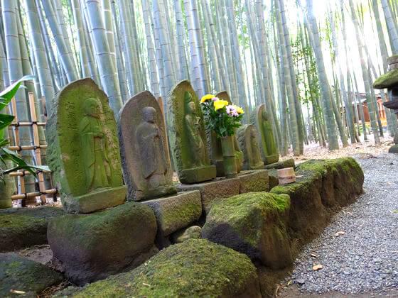 鎌倉 竹林 報国寺