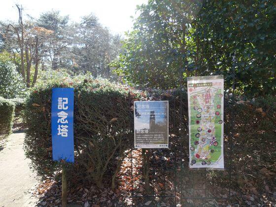 森林公園 椿園