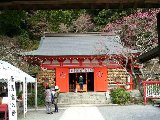 鎌倉荏柄天神社梅